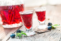 Fresh liquor with berry fruits and alcohol in summer Royalty Free Stock Image