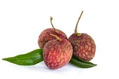 Fresh litchi fruits Royalty Free Stock Image