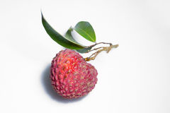 Fresh litchi/lychee isolated on white background Stock Images