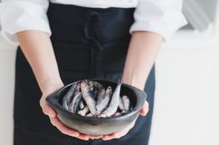 Little fishes in ceramic bowl over chef`s hands. stock photos