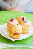 Fresh little muffins Royalty Free Stock Photography