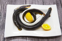 Fresh live fish lamprey on porcelain plate with lemon. Royalty Free Stock Image