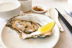Fresh live raw oyster served with lemon and chili sauce. In restaurant Stock Images