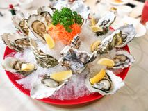 Fresh live raw oyster served with lemon and chili sauce. In restaurant Royalty Free Stock Photo