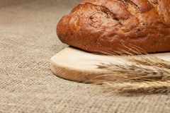 Fresh loaf of bread with ears of rye on breadboard Stock Photos