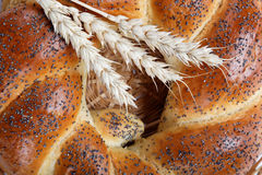 A fresh loaf of bread sprinkle with poppy. Stock Image