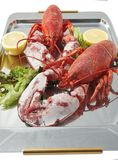 FRESH LOBSTER . Stock Images