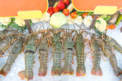 Fresh lobsters Stock Photography