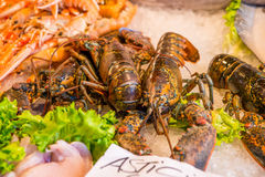 Fresh lobsters for sale in outdoor fish market in Venice, Italy. Stock Photography