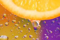 Fresh lobule of orange Royalty Free Stock Image