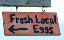 Fresh local eggs sign Royalty Free Stock Images