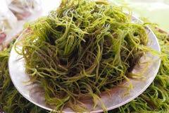 Fresh local seaweed (Gracilaria fisferi) in south of Thailand market Stock Photos
