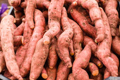 Fresh local sweet potatoes at the market Stock Image