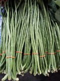 Fresh long beans royalty free stock images