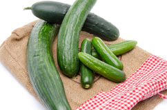 Fresh long and mini cucumbers on burlap Royalty Free Stock Photo
