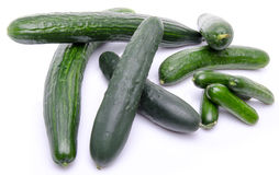 Fresh long and mini cucumbers Royalty Free Stock Photo