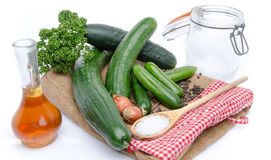 Fresh long and mini cucumbers with some ingredients for putting Royalty Free Stock Photography