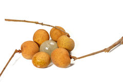 Fresh longan Royalty Free Stock Photo