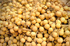 Fresh longan Stock Photography