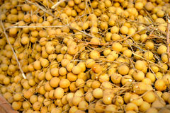 Fresh longan Stock Photos
