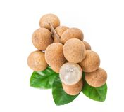 Fresh longan isolated on white background Stock Images