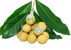 Fresh longan on white background. Fresh longan on white background with leaf Stock Images
