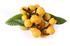Fresh loquat fruit Royalty Free Stock Images