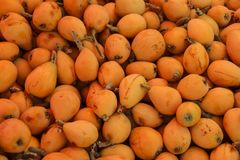 Fresh loquat in one of the markets of Amman, Jordan royalty free stock photo