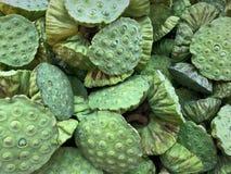 Fresh Lotus Fruits Background Stock Photography