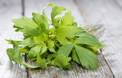Fresh Lovage Stock Photo