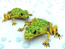 Fresh love. 3d render of a couple of multicolored frogs on a wet surface stock illustration