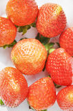 The fresh  luscious red strawberries Stock Photography