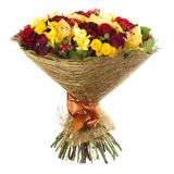 Fresh, lush bouquet of colorful flowers, isolated on white background Stock Photos