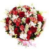 Fresh, lush bouquet of colorful flowers, isolated on white background Royalty Free Stock Image