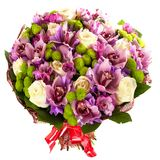 Fresh, lush bouquet of colorful flowers, isolated on white background Stock Images