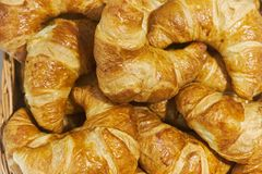 Fresh lush croissants handmade. Banquet table. Catering.  royalty free stock photography