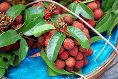Fresh Lychee. Mix Fresh Lychee with leaves Royalty Free Stock Images