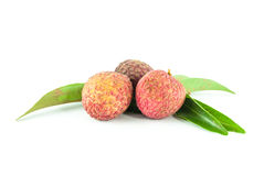 Fresh lychee isolated Royalty Free Stock Photography