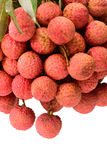 Fresh lychee (Litchi chinensis) Royalty Free Stock Photo
