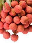 Fresh lychee (Litchi chinensis) Royalty Free Stock Photo