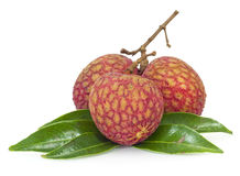 Fresh lychees Royalty Free Stock Photos