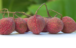 Fresh lychees, Tropical fruit Stock Photography