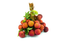 Fresh lychees on white background royalty free stock image