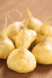 Fresh Maca Roots Stock Image