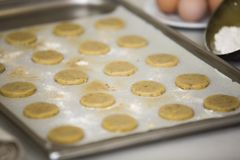 Oven Tray with Macadamia Nut Cookies Ready to Bake Stock Photography