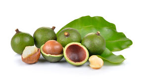 Fresh macadamia nut on white background Royalty Free Stock Photo