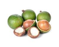 Fresh macadamia nuts Royalty Free Stock Image