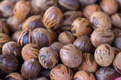 Fresh mace and nutmeg with selective focus. Basket full of fresh mace and nutmeg with selective focus at market stall Royalty Free Stock Photos