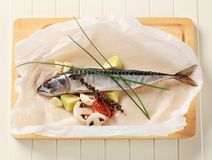 Fresh mackerel Royalty Free Stock Images