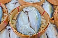 Fresh mackerel in basket in market, Thailand Royalty Free Stock Image